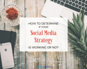 social media strategies for non profits